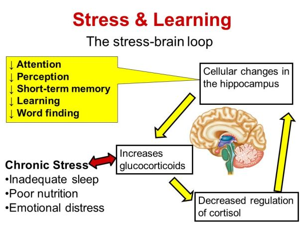 stress_learning